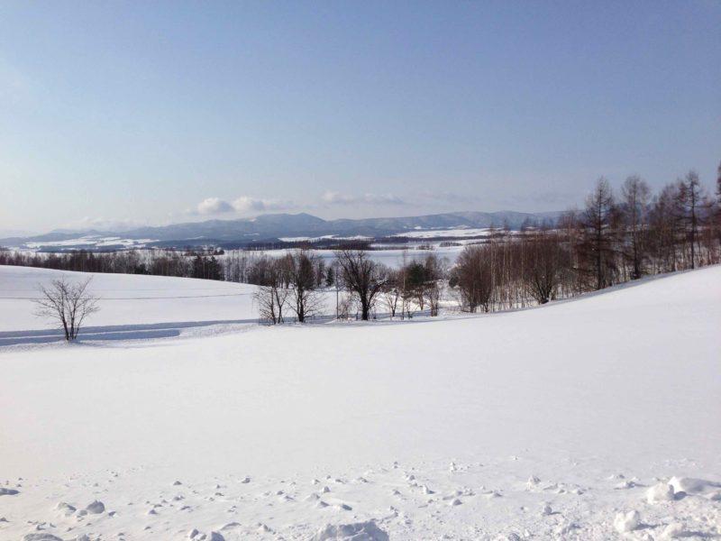 雪の美瑛の丘1