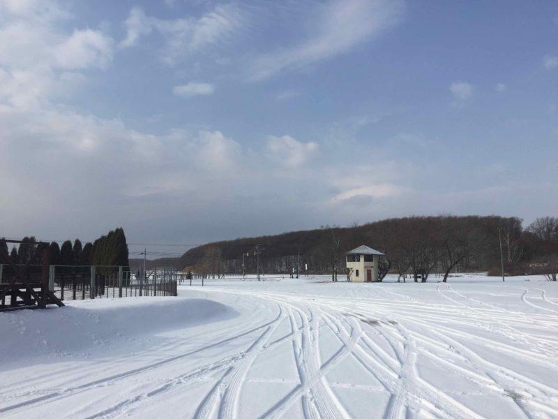 苫小牧の積雪状況